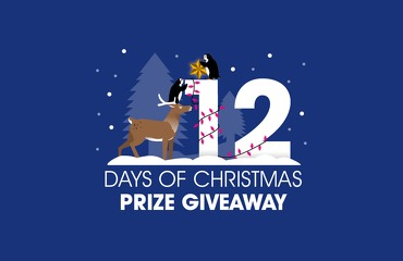 The 12 Days of Christmas Prize Giveaway